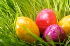 Wielkanoc - wspania�e weso�e �wi�ta...