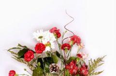 Kwiaty ci�te