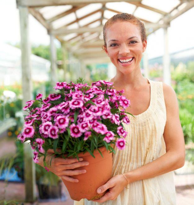 Jak naturalnie zadbać o kwiaty?