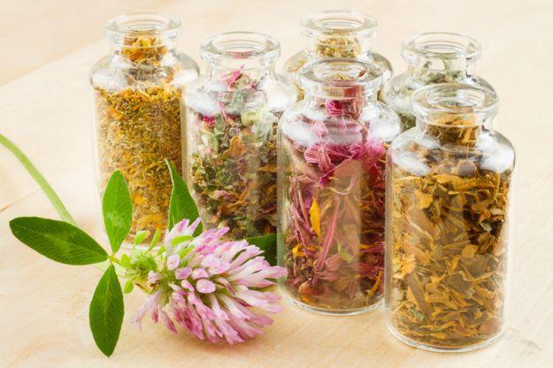 5 ziół na objawy menopauzy