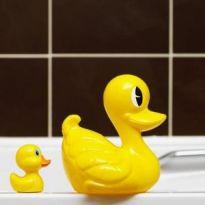 Jak usunąć pleśń na fugach w łazience?