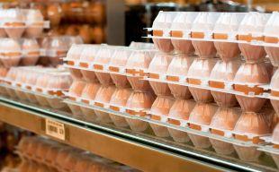 Запрет на продажу клеточных яиц: с января 2012 года!