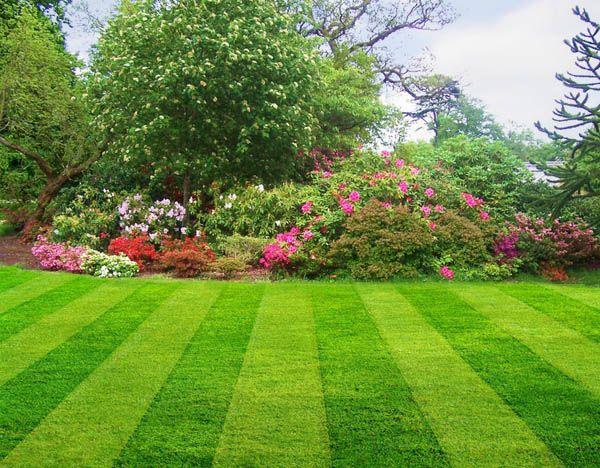 Kalendarz ogrodnika na kwiecień