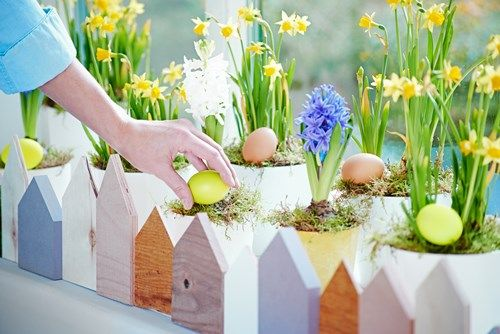 Zrób to sam: wielkanocny ogródek na parapecie