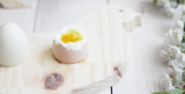 Jajko - wszystko, co musisz wiedzieć o jajku