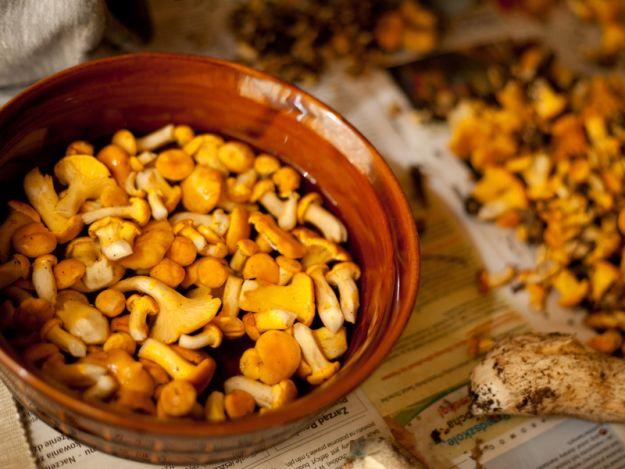 15 przepisów na dania z kurkami
