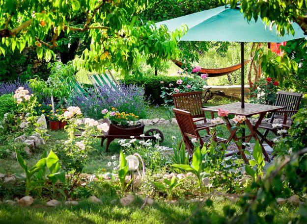 Naturalne sposoby na szkodniki w twoim ogrodzie
