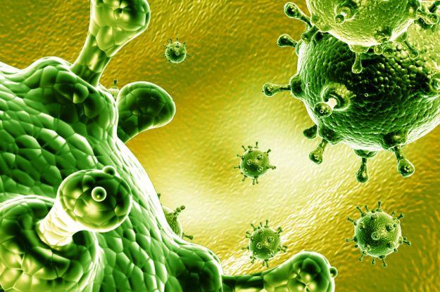 Wirus grypy H7N9 – dlaczego jest taki groźny?