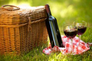 Nowe wina na półkach popularnego dyskontu