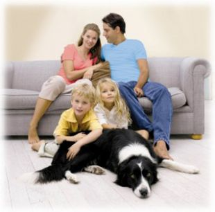 Jak zadbać o czyste powietrze w mieszkaniu?