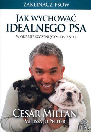 ZAKLINACZ PSÓW - jak wychować idealnego psa?