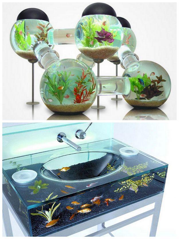 nowoczesne akwarium